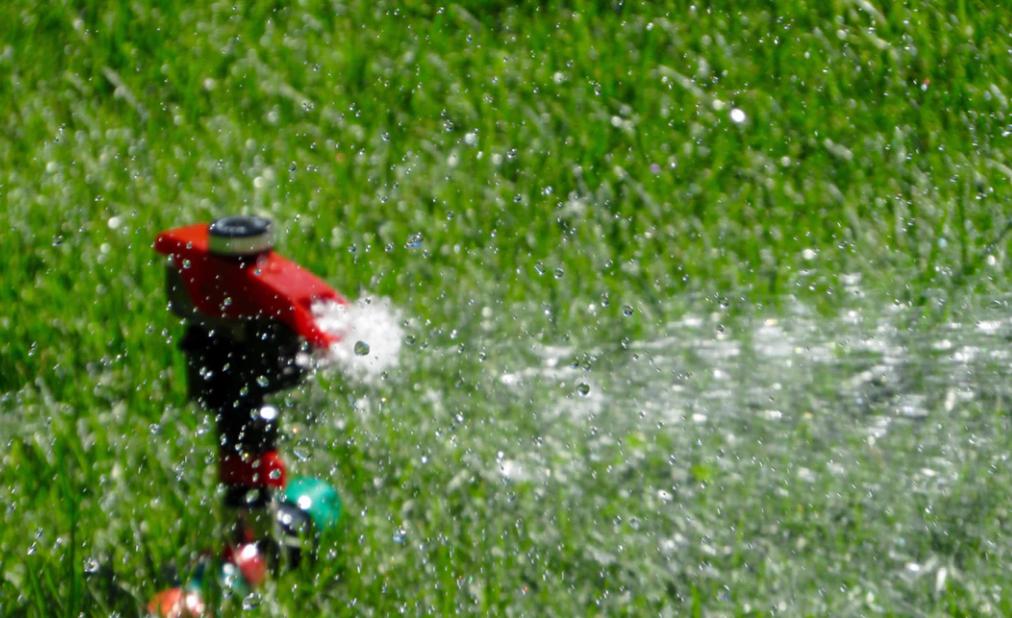 Nasveti za polaganje travne ruše